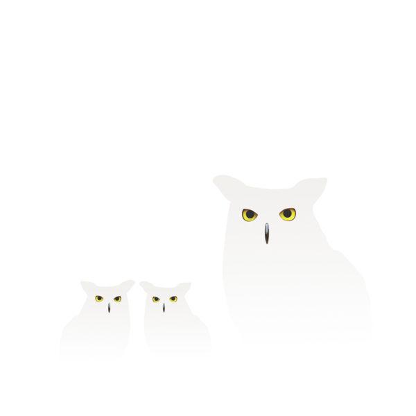 uilen in de sneeuw 1