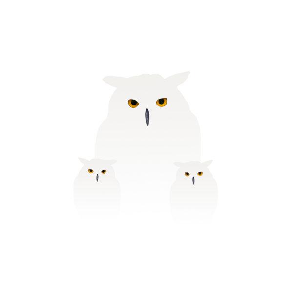 uilen in de sneeuw 2