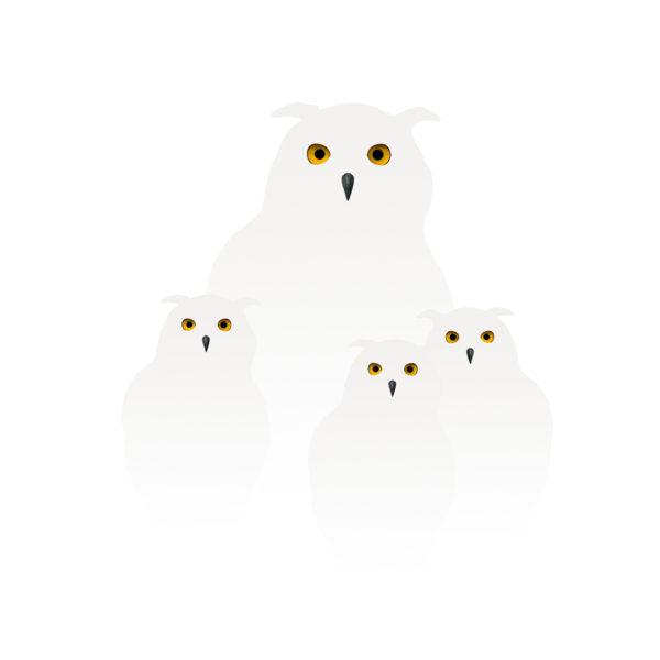 uilen in de sneeuw 3