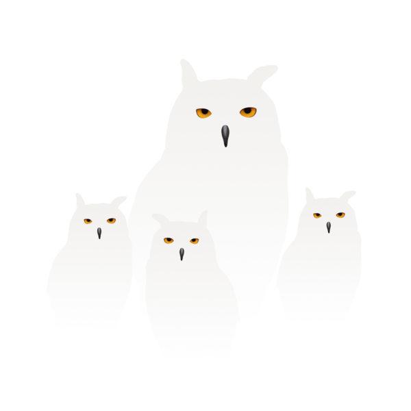 uilen in de sneeuw 4