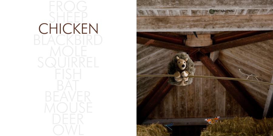 Hedgehog_002_chicken