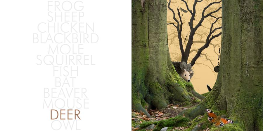 Hedgehog_002_deer
