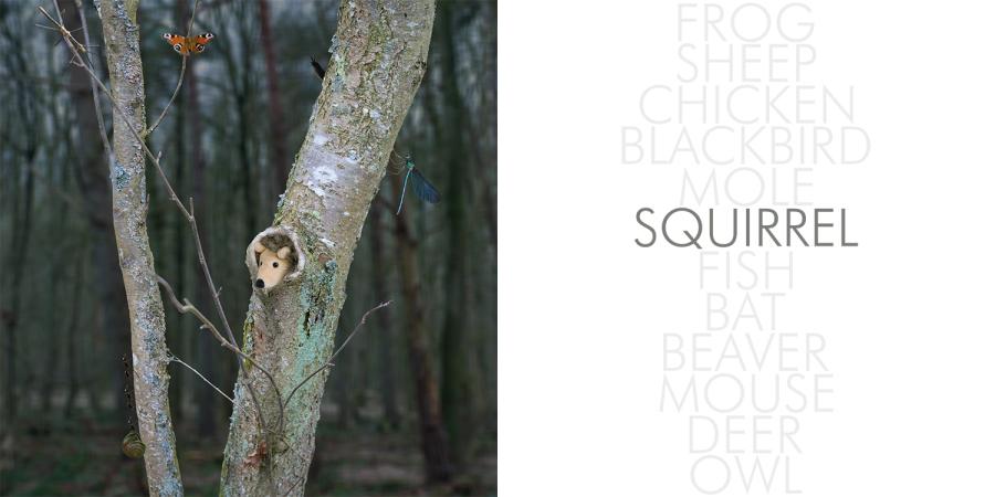 Hedgehog_002_squirrel
